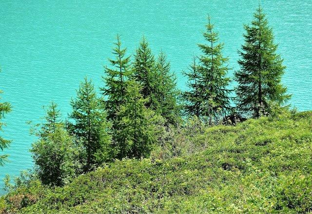 Lago di Cheggio - Rosella Reali